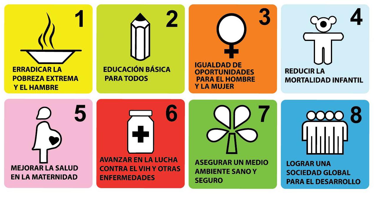 Objetivos de Desarrollo del Milenio, una falsa declaración de ...